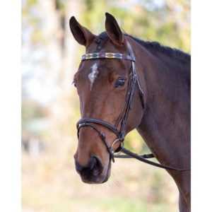Frontalino in cuoio Polo Shires