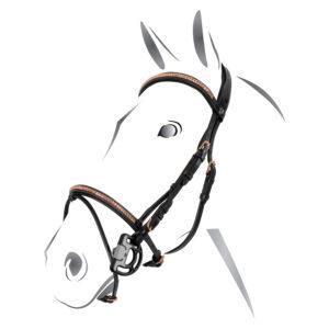 Testiera Equestro Clincher Rosegold