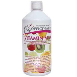 Vitamin Max Integratore naturale Officinalis 1000 ml